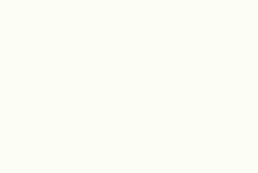 Ptemium White W1000 ST89