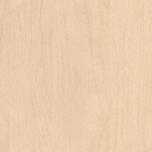 Mainau birch H1733_ST9